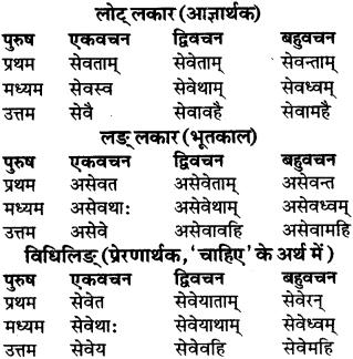 RBSE Class 9 Sanskrit व्याकरण रूप-प्रकरणम् 66