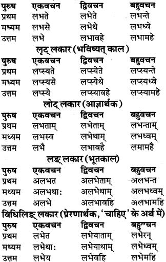 RBSE Class 9 Sanskrit व्याकरण रूप-प्रकरणम् 67