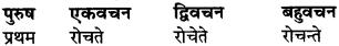 RBSE Class 9 Sanskrit व्याकरण रूप-प्रकरणम् 68