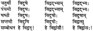 RBSE Class 9 Sanskrit व्याकरण रूप-प्रकरणम् 7