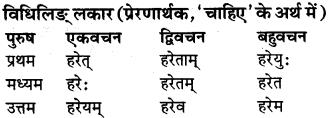 RBSE Class 9 Sanskrit व्याकरण रूप-प्रकरणम् 79