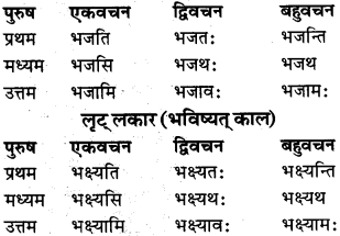 RBSE Class 9 Sanskrit व्याकरण रूप-प्रकरणम् 81