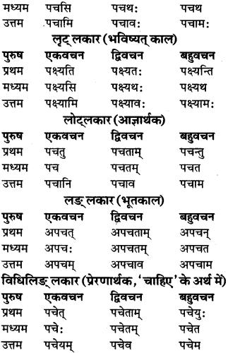 RBSE Class 9 Sanskrit व्याकरण रूप-प्रकरणम् 85