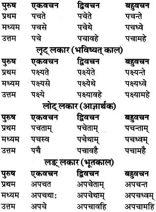 RBSE Class 9 Sanskrit व्याकरण रूप-प्रकरणम् 86