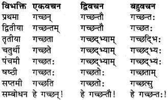RBSE Class 9 Sanskrit व्याकरण रूप-प्रकरणम् 9