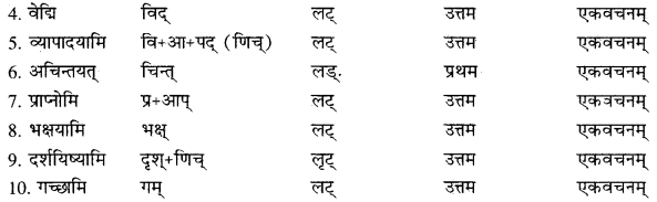 RBSE Solutions for Class 10 Sanskrit स्पन्दन Chapter 14 यो यद्वपति बीजं हि लभते तादृशं फलम्