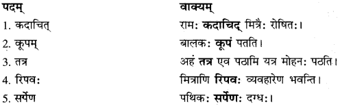 RBSE Solutions for Class 10 Sanskrit स्पन्दन Chapter 14 image 5