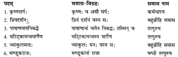 RBSE Solutions for Class 10 Sanskrit स्पन्दन Chapter 14 image 6