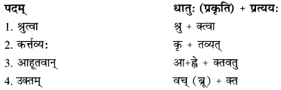 RBSE Solutions for Class 10 Sanskrit स्पन्दन Chapter 14 image 7