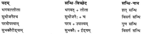 RBSE Solutions for Class 10 Sanskrit स्पन्दन Chapter 9 भारत-वैभवम्