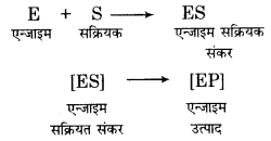 RBSE Solutions for Class 12 Biology Chapter 9 Q.2.1