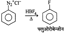 RBSE Solutions for Class 12 Chemistry Chapter 10 हैलोजेन व्युत्पन्न image 202