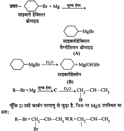 RBSE Solutions for Class 12 Chemistry Chapter 10 हैलोजेन व्युत्पन्न image 238
