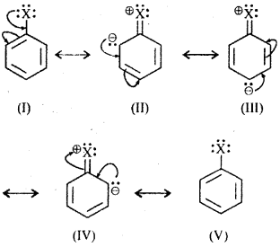 RBSE Solutions for Class 12 Chemistry Chapter 10 हैलोजेन व्युत्पन्न image 17