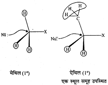 RBSE Solutions for Class 12 Chemistry Chapter 10 हैलोजेन व्युत्पन्न image 58