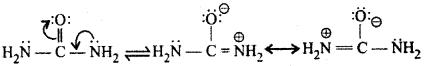 RBSE Solutions for Class 12 Chemistry Chapter 13 नाइट्रोजन युक्त क्रियात्मक समूह वाले कार्बनिक यौगिक image 23