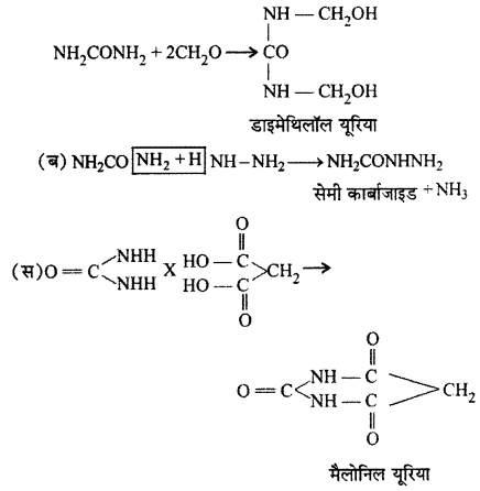 RBSE Solutions for Class 12 Chemistry Chapter 13 नाइट्रोजन युक्त क्रियात्मक समूह वाले कार्बनिक यौगिक image 11