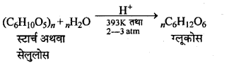 RBSE Solutions for Class 12 Chemistry Chapter 14 जैव-अणु image 2