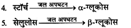 RBSE Solutions for Class 12 Chemistry Chapter 14 जैव-अणु image 9