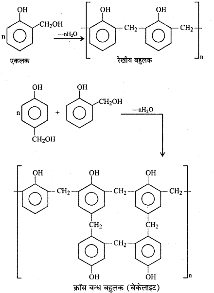 RBSE Solutions for Class 12 Chemistry Chapter 15 बहुलक image 28