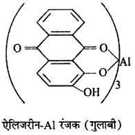 RBSE Solutions for Class 12 Chemistry Chapter 17 दैनिक जीवन में रसायन image 47