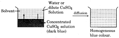 RBSE Solutions for Class 12 Chemistry Chapter 2 Solution image 8