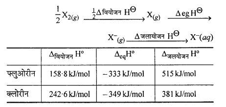 RBSE Solutions for Class 12 Chemistry Chapter 7 p ब्लॉक के तत्व image 15