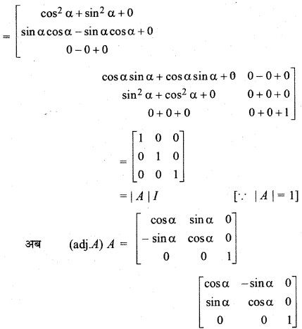 RBSE Solutions for Class 12 Maths Chapter 5 Ex 5.1 25