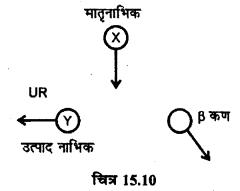 RBSE Solutions for Class 12 Physics Chapter 15 नाभिकीय भौतिकी sh Q 10