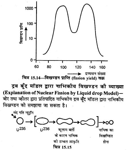RBSE Solutions for Class 12 Physics Chapter 15 नाभिकीय भौतिकी sh Q 13.5