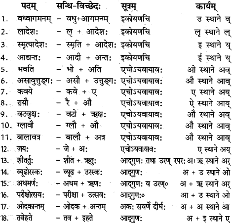 RBSE Solutions for Class 12 Sanskrit विजेत्र Chapter 14 पितामही मिलिता 11