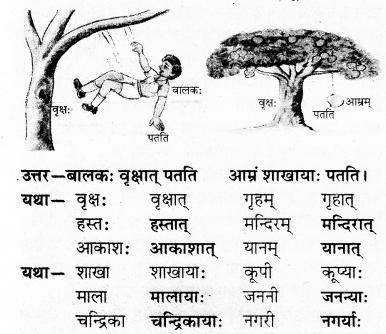 RBSE Solutions for Class 7 Sanskrit Ranjini Chapter 3 संस्कृतदिवसः 3