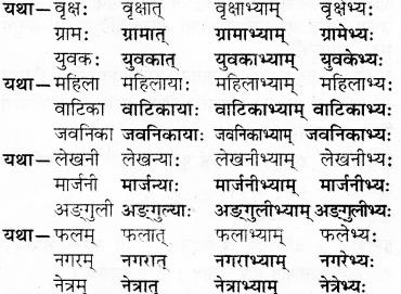 RBSE Solutions for Class 7 Sanskrit Ranjini Chapter 3 संस्कृतदिवसः 7