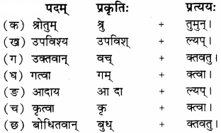 RBSE Solutions for Class 8 Sanskrit रञ्जिनी Chapter 15 स्वच्छ भारतम् - 1