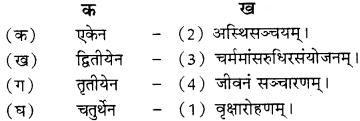 RBSE Solutions for Class 8 Sanskrit रञ्जिनी Chapter 2 विद्यायाः बुद्धिरुत्तमा A6