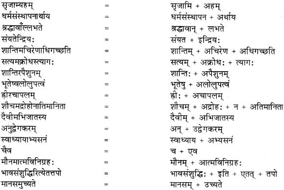 RBSE Solutions for Class 8 Sanskrit रञ्जिनी Chapter 5 गीतामृतम् - 5