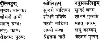 RBSE Solutions for Class 8 Sanskrit रञ्जिनी Chapter 7 स्वागतं ते राजस्थाने