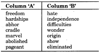 RBSE Solutions for Class 9 English Insight Chapter 9 The World as I See It 1
