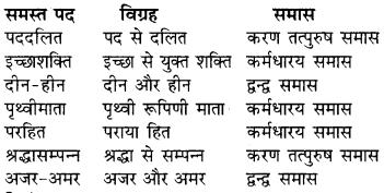 RBSE Solutions for Class 9 Hindi प्रबोधिनी Chapter 1 युवाओं से 1