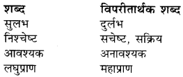 Rajasthan Board RBSE Class 9 Hindi प्रबोधिनी Chapter 6 गिल्लू 1