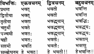 RBSE Solutions for Class 8 Sanskrit रञ्जिनी Chapter 9 यौतकं पातकम्