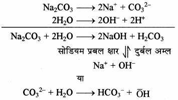 RBSE Solutions for Class 11 Chemistry Chapter 10 s-ब्लॉक तत्त्व img 7