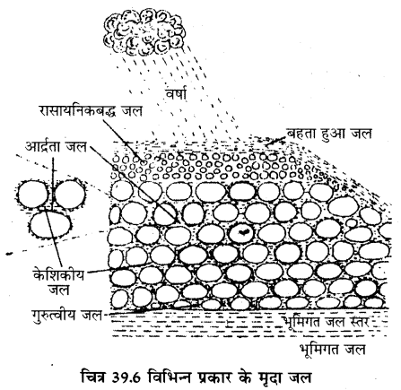 RBSE Solutions for Class 11 Biology Chapter 39 पर्यावरणीय कारक img-3