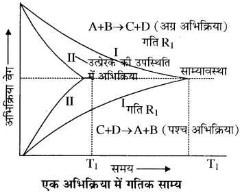 RBSE Solutions for Class 11 Chemistry Chapter 7 साम्य img 21