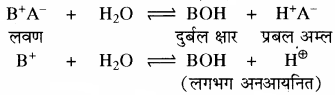 RBSE Solutions for Class 11 Chemistry Chapter 7 साम्य img 9