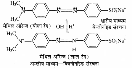 RBSE Solutions for Class 11 Chemistry Chapter 7 साम्य img 71