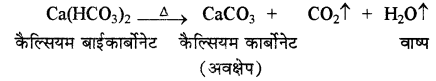RBSE Solutions for Class 11 Chemistry Chapter 9 हाइड्रोजन img 8