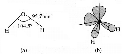RBSE Solutions for Class 11 Chemistry Chapter 9 हाइड्रोजन img 16