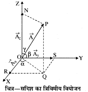 RBSE Solutions for Class 11 Physics Chapter 2 प्रारम्भिक गणितीय संकल्पनायें 12