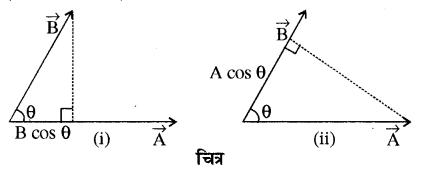 RBSE Solutions for Class 11 Physics Chapter 2 प्रारम्भिक गणितीय संकल्पनायें 5